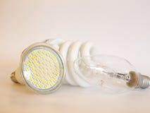 Bulbs Stock Photos