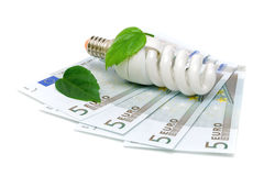 Bulbs and euro on white background Royalty Free Stock Image