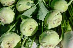 Bulbs of fresh kohlrabi vegetable on market stall for sale Stock Photos