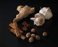 Bulbs of garlic, nutmeg, anise stars and cinnamon sticks on a bl royalty free stock photography