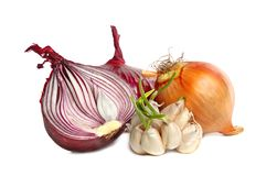 Bulbs of garlic and red onion Stock Images