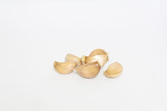 Bulbs of garlics on white background. Stock Image