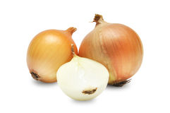 Bulbs of onion Stock Image
