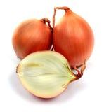 Bulbs of onion Stock Photo