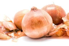 Bulbs and onion husks. On a white background Stock Photos