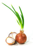 Bulbs of red onion Stock Image
