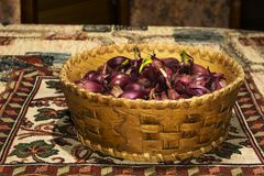 Bulbs of red onion, intended for planting, in a small birch-bark basket Royalty Free Stock Photo