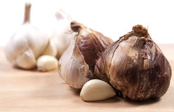 Bulbs of smoked and white garlic Stock Images