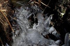 Bulby, ghiaccioli pieni di bolle Immagini Stock Libere da Diritti