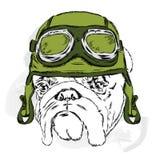 Buldog die een helm dragen racer Proef stock illustratie