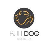 Buldog Logo Design Stock Afbeeldingen