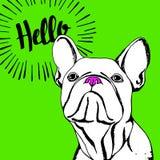 Buldoga zwierzęcia domowego psiego zwierzęcego francuskiego wektorowego ilustracyjnego trakenu śliczny rysunkowy szczeniak royalty ilustracja