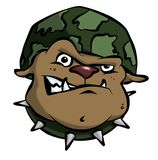 Buldogue do exército dos desenhos animados Fotos de Stock Royalty Free