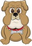 Buldogue dos desenhos animados Foto de Stock Royalty Free