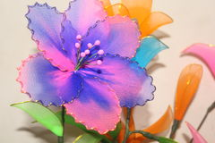 Bule color flower Royalty Free Stock Image