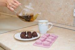 Bule de vidro com a flor de florescência do chá para dentro contra de madeira Imagens de Stock Royalty Free