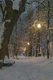 Bulevar, cubierto con nieve fresca Fotografía de archivo