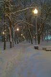 Bulevar, cubierto con nieve fresca Imagenes de archivo