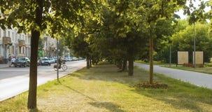 Bulevar da cidade no por do sol vídeos de arquivo
