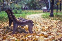 Bulevar del otoño Fotografía de archivo libre de regalías
