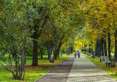Bulevar del otoño Imágenes de archivo libres de regalías