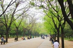 Bulevar del parque de Pekín imágenes de archivo libres de regalías