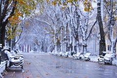 Bulevar do inverno do outono foto de stock