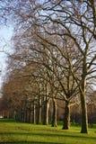 Bulevar, Londres Fotografía de archivo libre de regalías