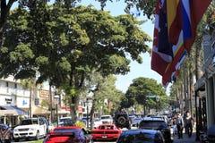 Bulevar ocupado dos Olas de Las Foto de Stock