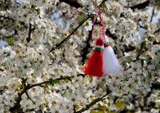 Bulgaarse martenitsa op bloesemboom Stock Fotografie