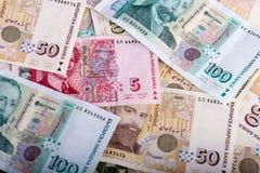 Bulgaarse munt BGN Royalty-vrije Stock Afbeeldingen