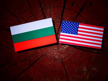 Bulgaarse vlag met de vlag van de V.S. op een boomstomp Royalty-vrije Stock Afbeelding
