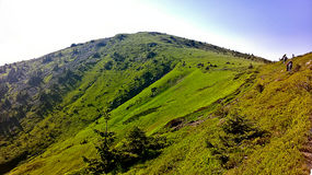 Bulgaria mountains. Beautiful Bulgarian nature in June Stock Images