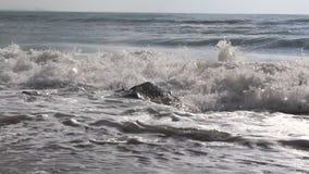 Bulgarian beach stone. Image was shot in Bulgaria beach stock video footage