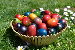 Eastern eggs on the grass. Bulgarian eastern eggs colourful on the grass in a basket Stock Photo