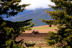 Bulgarian farmland Stock Image
