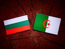 Bulgarian flag with Algerian flag on a tree stump isolated Stock Photography