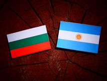 Bulgarian flag with Argentinian flag on a tree stump  Stock Images