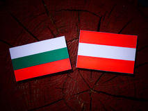 Bulgarian flag with Austrian flag on a tree stump  Royalty Free Stock Photography