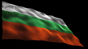 Bulgarian flag stock video footage