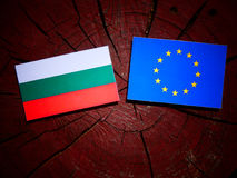 Bulgarian flag with EU flag on a tree stump isolated. Bulgarian flag with EU flag on a tree stump Stock Image
