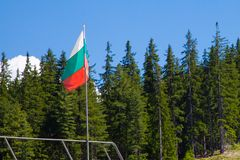 Bulgarian flag Royalty Free Stock Image