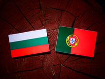 Bulgarian flag with Portuguese flag on a tree stump isolated. Bulgarian flag with Portuguese flag on a tree stump royalty free illustration
