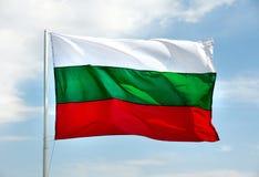 bulgarian flagga royaltyfri fotografi