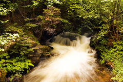 Bulgarian forest river. Forrest river at the bulgarian mountain Royalty Free Stock Photos