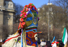 Bulgarian kuker mask Stock Photography