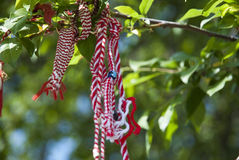 Bulgarian martenitsa hanging on tree branch Stock Photo