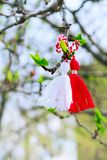 Bulgarian Martenitsa on the tree branch. Bulgarian Martenitsa spring sign on the tree branch holiday postcard background Royalty Free Stock Photos