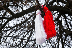 Bulgarian martenitsa on a tree Stock Photos
