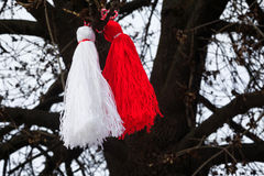 Bulgarian martenitsa on a tree Royalty Free Stock Image